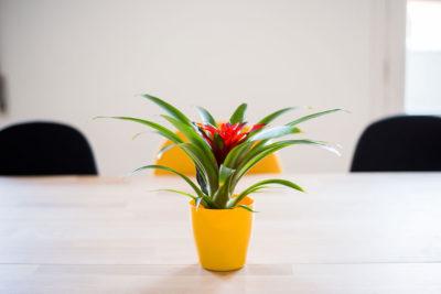 meeting room Valencia